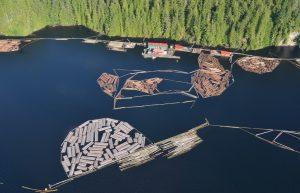 Hazard Zone Marked by Sealite Buoys at Log-Sort Operation